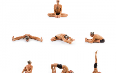 Hatha Yoga – Sequenza seduta 1
