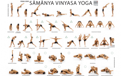 Lezioni gratuite Online di Samanya Vinyasa Yoga